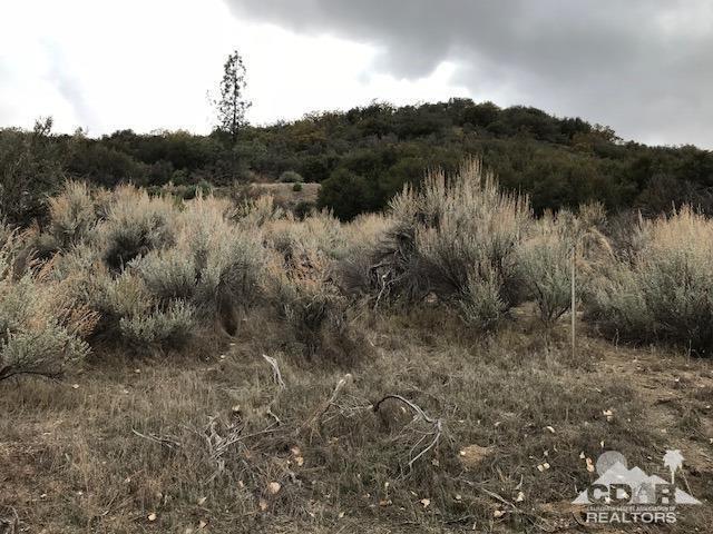 27 Pipe Creek, Mountain Center, CA 92561 (MLS #218007318) :: The John Jay Group - Bennion Deville Homes