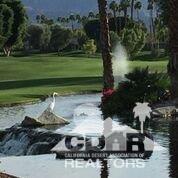 79 Blue River Drive, Palm Desert, CA 92211 (MLS #219002125) :: The Sandi Phillips Team