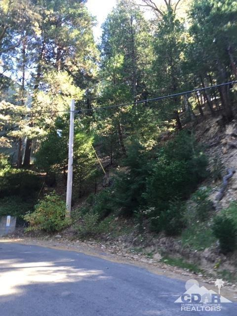 0 Lakeview Drive #2749, Crestline, CA 92325 (MLS #219002225) :: The John Jay Group - Bennion Deville Homes