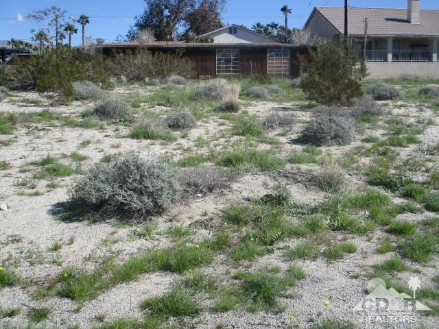 0 Avenida Rambla, Desert Hot Springs, CA 92240 (MLS #219005753) :: Brad Schmett Real Estate Group