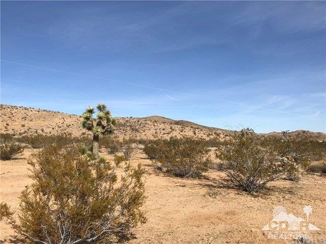 2580 Alta Avenue, Yucca Valley, CA 92284 (MLS #219014371) :: Hacienda Group Inc