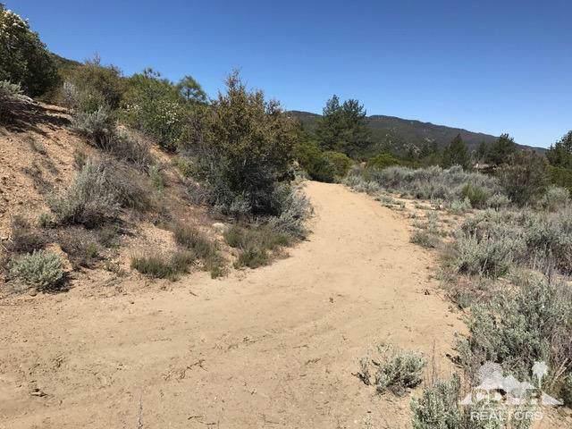 14 Gold Shot Creek, Mountain Center, CA  (MLS #219019559) :: Deirdre Coit and Associates