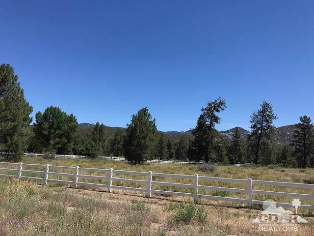 17 Penrod Canyon, Mountain Center, CA 92561 (MLS #219019705) :: Deirdre Coit and Associates