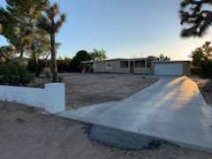7740 Joshua View Drive, Yucca Valley, CA 92284 (MLS #219030394) :: The Jelmberg Team