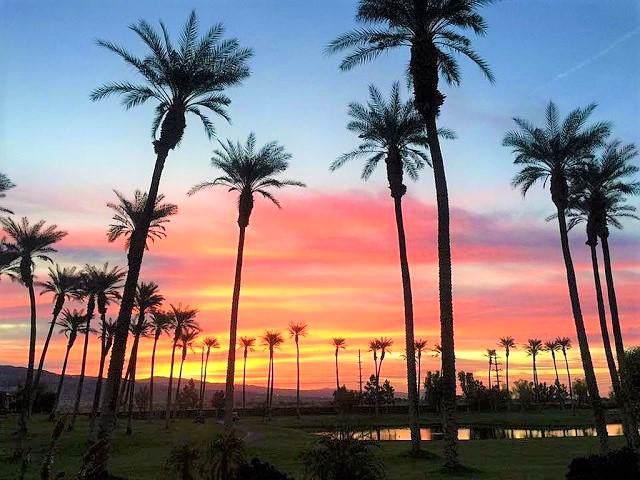 35800 Donny Circle, Palm Desert, CA 92211 (MLS #219031817) :: Brad Schmett Real Estate Group