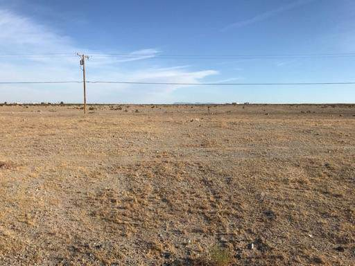 2318 Cooper Avenue, Thermal, CA 92274 (MLS #219033351) :: Brad Schmett Real Estate Group