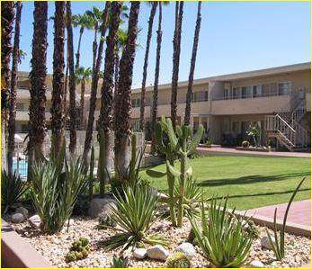 277 E Alejo Road, Palm Springs, CA 92262 (MLS #219034010) :: The Jelmberg Team