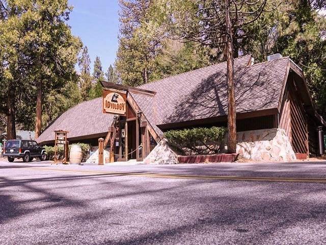54905 N Circle Drive, Idyllwild, CA 92549 (MLS #219034536) :: The John Jay Group - Bennion Deville Homes