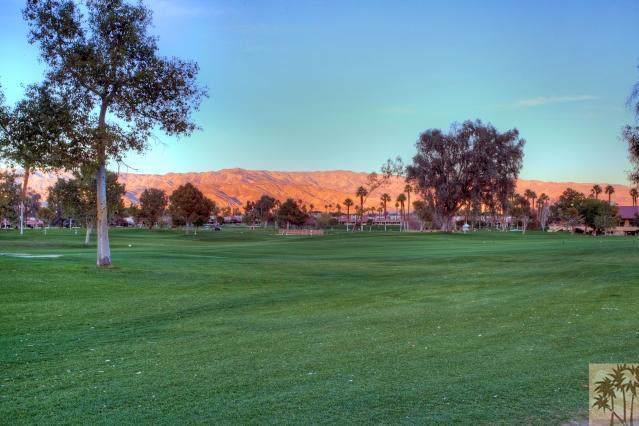 41610 Woodhaven Drive, Palm Desert, CA 92211 (MLS #219036882) :: Deirdre Coit and Associates