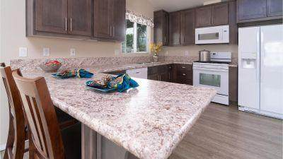 299 Butterfield, Cathedral City, CA 92234 (MLS #219039149) :: Mark Wise | Bennion Deville Homes