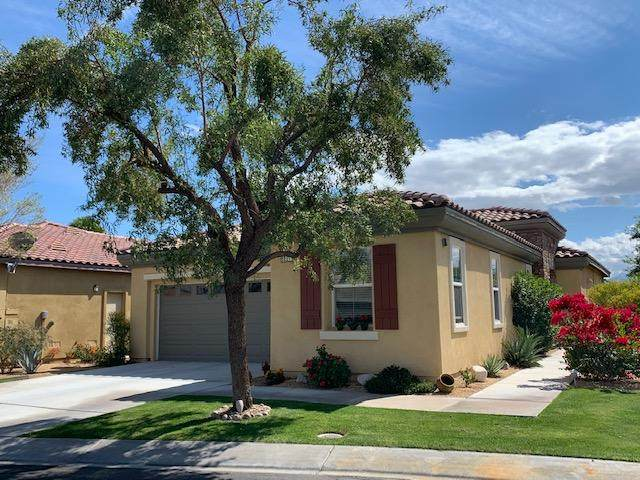 82279 Dreyfuss Court, Indio, CA 92201 (MLS #219040709) :: The Sandi Phillips Team