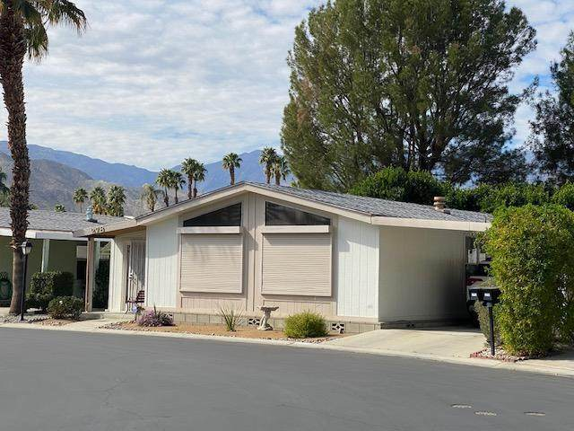 278 Coble Drive, Cathedral City, CA 92234 (MLS #219041587) :: Brad Schmett Real Estate Group