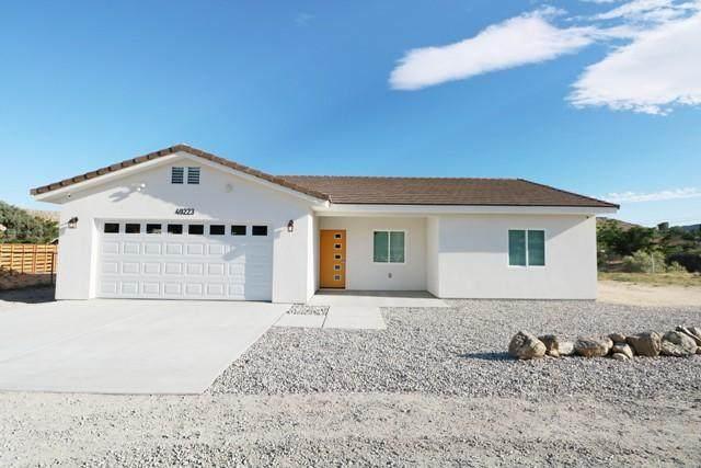49223 Park Avenue, Morongo Valley, CA 92256 (MLS #219043993) :: The John Jay Group - Bennion Deville Homes