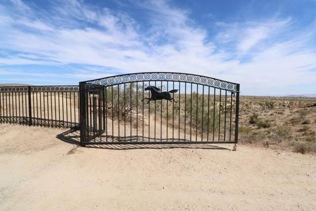 4625 Warren Vista Avenue, Yucca Valley, CA 92284 (MLS #219045475) :: Hacienda Agency Inc