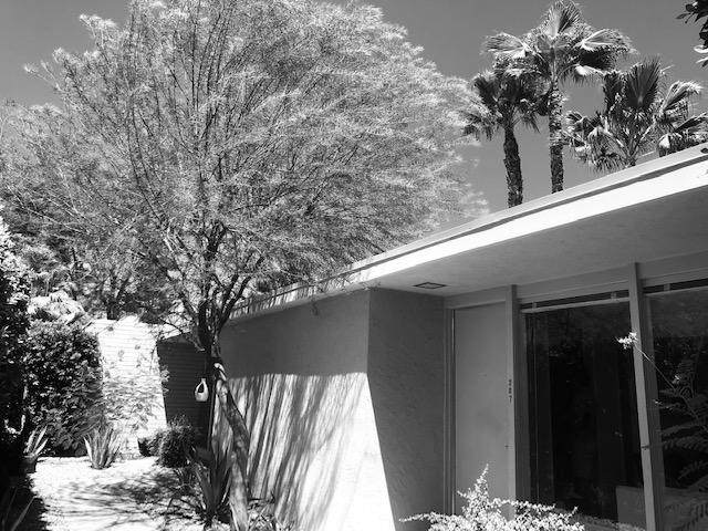 360 Cabrillo Road, Palm Springs, CA 92262 (MLS #219046987) :: The Sandi Phillips Team