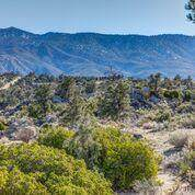 27 Scenic Drive, Mountain Center, CA 92561 (MLS #219047865) :: Zwemmer Realty Group