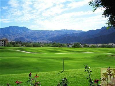 78155 Calle Norte, La Quinta, CA 92253 (MLS #219048135) :: The John Jay Group - Bennion Deville Homes