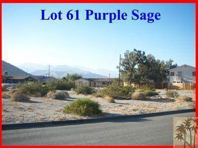 Lot 61 Purple Sage, Palm Springs, CA 92262 (MLS #219049286) :: Mark Wise | Bennion Deville Homes
