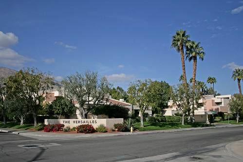 1621 Cerritos, Palm Springs, CA 92264 (MLS #219049858) :: The John Jay Group - Bennion Deville Homes