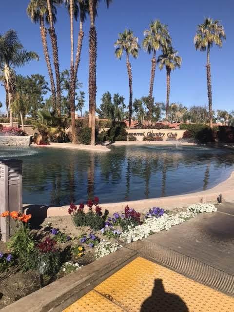 129 Camino Arroyo, Palm Desert, CA 92260 (MLS #219056003) :: Brad Schmett Real Estate Group