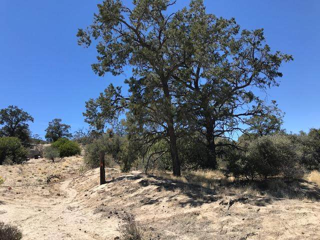 Lot 93 Scenic, Mountain Center, CA 92561 (MLS #219061459) :: The Jelmberg Team