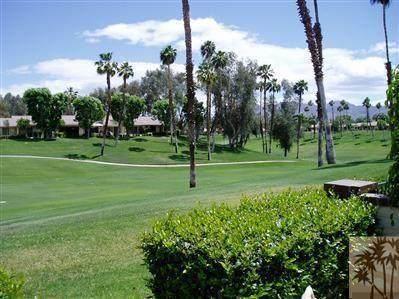 292 Serena Drive, Palm Desert, CA 92260 (MLS #219063582) :: The Sandi Phillips Team