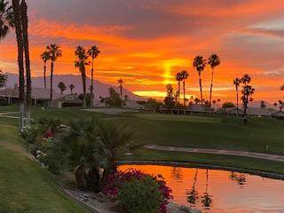 76740 Kybar Road, Palm Desert, CA 92211 (MLS #219063668) :: Brad Schmett Real Estate Group