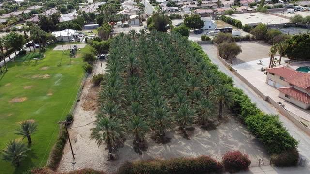 41480 Yucca Lane Lane, Bermuda Dunes, CA 92203 (MLS #219064271) :: Desert Area Homes For Sale