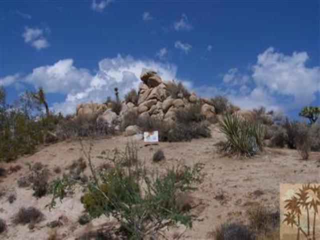 0 Buena Suerte Lane, Yucca Valley, CA 92284 (MLS #41258162PS) :: Team Wasserman