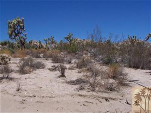 0 Bandera Road, Yucca Valley, CA 92284 (MLS #41300211PS) :: Team Wasserman