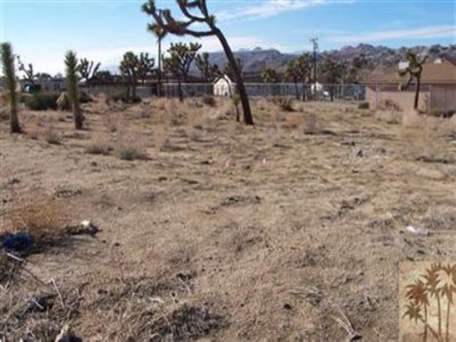 0 Diadem Drive, Yucca Valley, CA 92284 (MLS #41317209PS) :: Team Wasserman