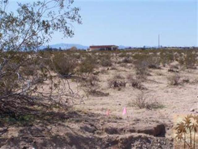 0 Desert Flower Avenue, Twenty-Nine Palms, CA 92277 (MLS #41392879) :: The John Jay Group - Bennion Deville Homes