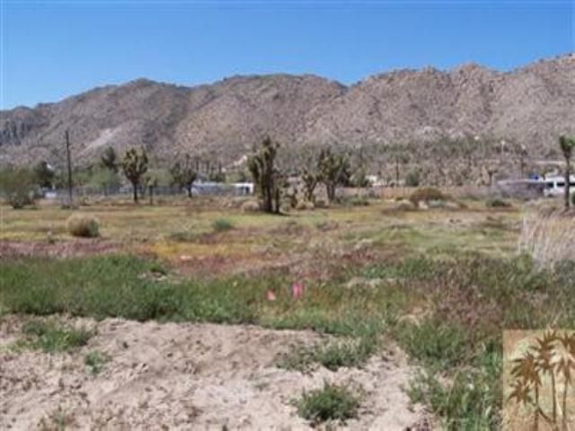 0 Palm Avenue, Yucca Valley, CA 92284 (MLS #41396370PS) :: Team Wasserman