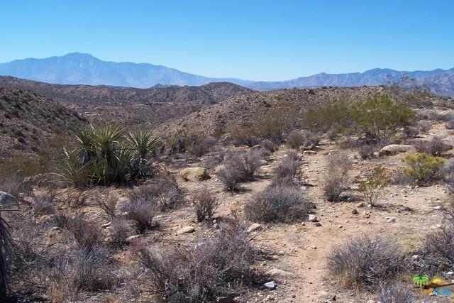 54575 Navajo, Yucca Valley, CA 92284 (MLS #16171724PS) :: The John Jay Group - Bennion Deville Homes