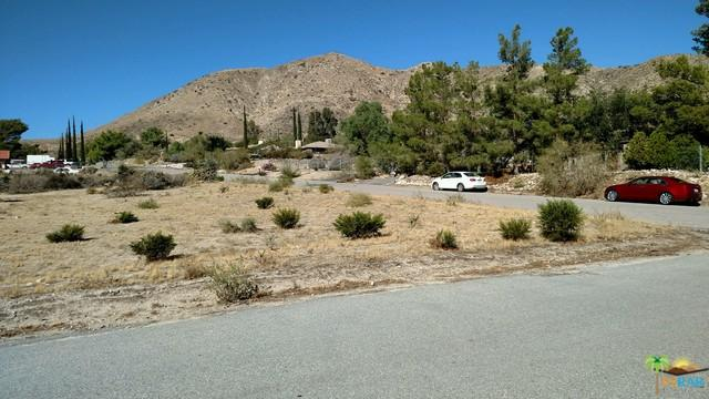 49097 N Hibiscus Drive, Morongo Valley, CA 92256 (MLS #16174316PS) :: Deirdre Coit and Associates