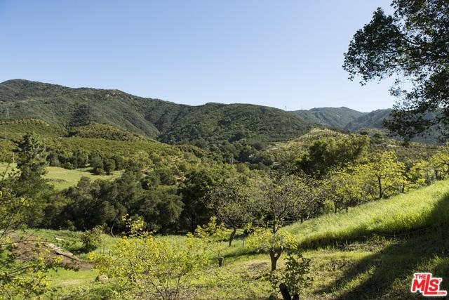 7243 Gobernador Canyon Road, Carpinteria, CA 93013 (MLS #17249552) :: Deirdre Coit and Associates