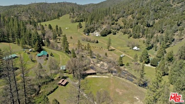 8651 Bull Creek Road, Coulterville, CA 95311 (MLS #18355062) :: Deirdre Coit and Associates