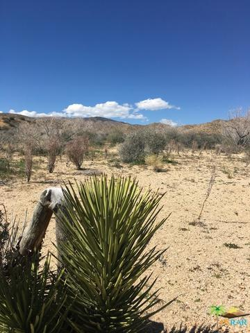 0 Ox Yoke Pass, Pioneertown, CA 92268 (MLS #19447040PS) :: Hacienda Group Inc
