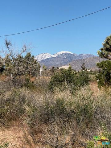 0 Kickapoo Trail, Yucca Valley, CA 92284 (MLS #19455670PS) :: Deirdre Coit and Associates
