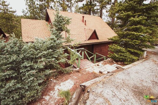 1038 Brookside Lane, Fawnskin, CA 92333 (MLS #19457758PS) :: The John Jay Group - Bennion Deville Homes