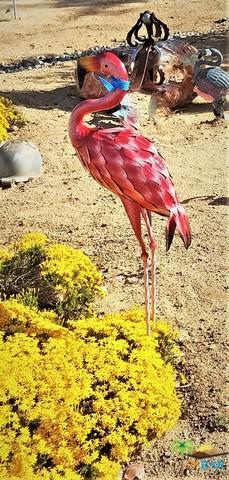 58763 La Mirada, Yucca Valley, CA 92284 (MLS #19467516PS) :: Hacienda Group Inc