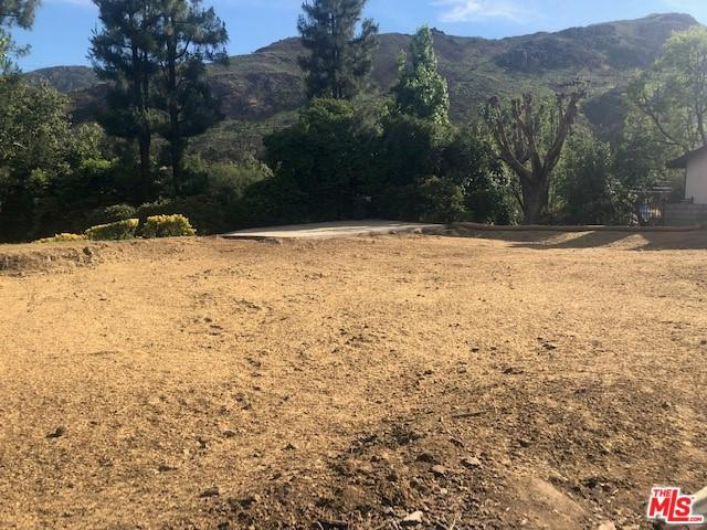 29733 Mulholland Highway, Agoura Hills, CA 91301 (MLS #19477318) :: The John Jay Group - Bennion Deville Homes