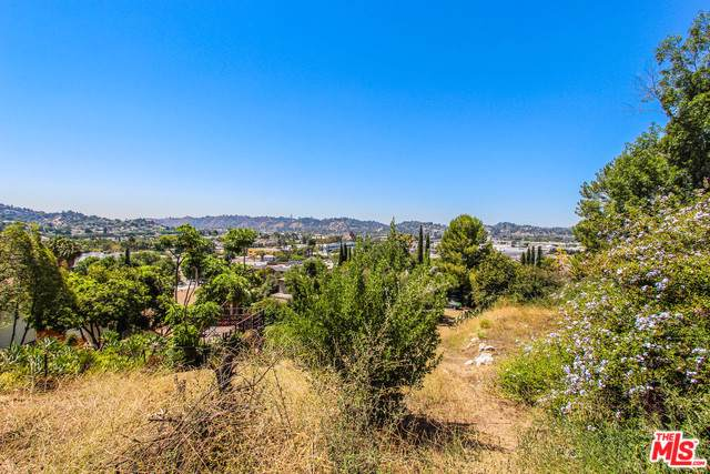 3133 Weldon Avenue, Los Angeles (City), CA 90065 (MLS #19493396) :: Hacienda Group Inc