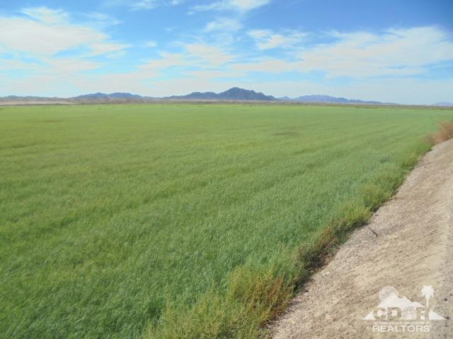 156 Acres Off Of Ben Hulse Hwy, Blythe, CA 92225 (MLS #219018627) :: The Sandi Phillips Team