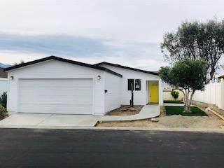 15300 N Palm Drive #258, Desert Hot Springs, CA 92240 (MLS #219050090) :: Zwemmer Realty Group