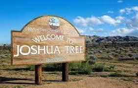 61803 Plaza Rd Road, Joshua Tree, CA 92252 (#219056715) :: The Pratt Group