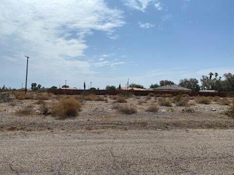 2830 Gram Drive, Salton City, CA 92275 (MLS #219060270) :: Zwemmer Realty Group
