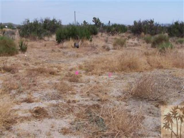 0 Old Woman Springs Road, Yucca Valley, CA 92284 (MLS #41258195PS) :: Team Wasserman