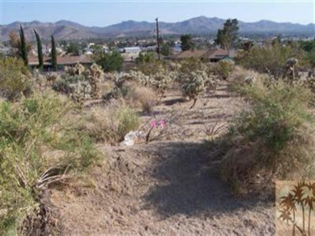 0 Warren Way, Yucca Valley, CA 92284 (MLS #41367240PS) :: Team Wasserman