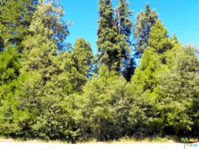 0 State Hwy 173, Lake Arrowhead, CA 92352 (MLS #19433894PS) :: Deirdre Coit and Associates